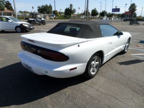 2000 Pontiac Firebird Convertible Photo 3